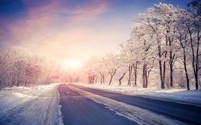 Picture Sunset, Nature, Winter, Road, Trees, Snow, Dawn