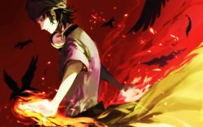 Picture birds, fire, magic, anime, feathers, headphones, art, guy, yata misaki, k-project