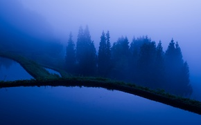 Picture trees, mountains, fog, lake, cascade