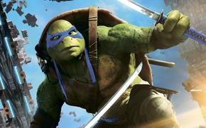 Picture fantasy, Leonardo, Teenage Mutant Ninja Turtles: Out of the Shadows, Teenage mutant ninja turtles 2