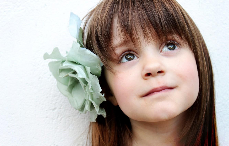 Photo wallpaper flower, hair, child, girl, child, bangs, rosette