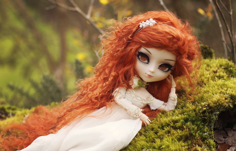 Photo wallpaper toy, moss, doll, redhead