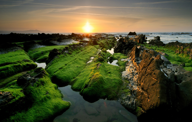 Photo wallpaper sea, the sun, stones, rocks, green