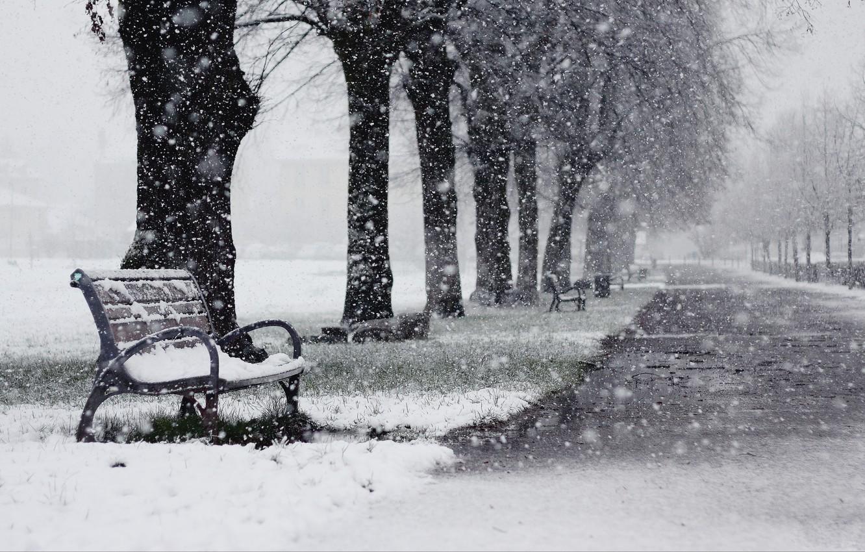 Photo wallpaper winter, snow, trees, Park, alley, shop