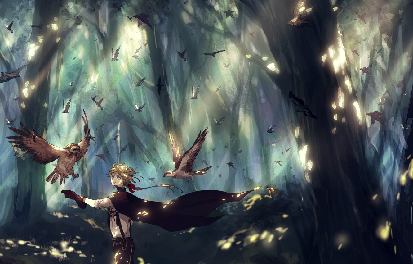 Photo wallpaper forest, trees, birds, nature, anime, art, guy, canarinu kmes