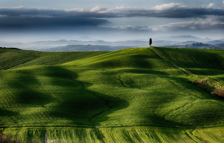 Photo wallpaper the sky, clouds, tree, field, Italy, Tuscany