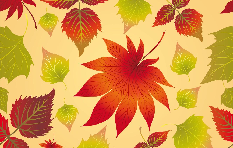Photo wallpaper leaves, background, autumn, leaves, autumn, maple