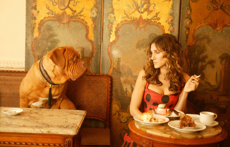 Photo wallpaper girl, the film, dog, cafe