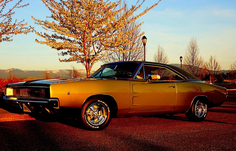 Photo wallpaper the sky, trees, Dodge, Dodge, Charger, the front, 1968, Muscle car, Muscle car, The charger, …