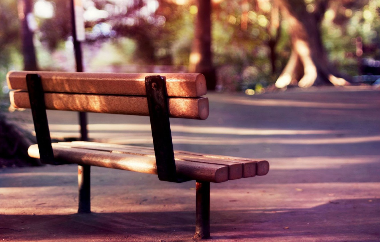 Photo wallpaper summer, trees, bench, nature, background, stay, widescreen, romance, mood, calm, blur, spring, morning, day, shop, …