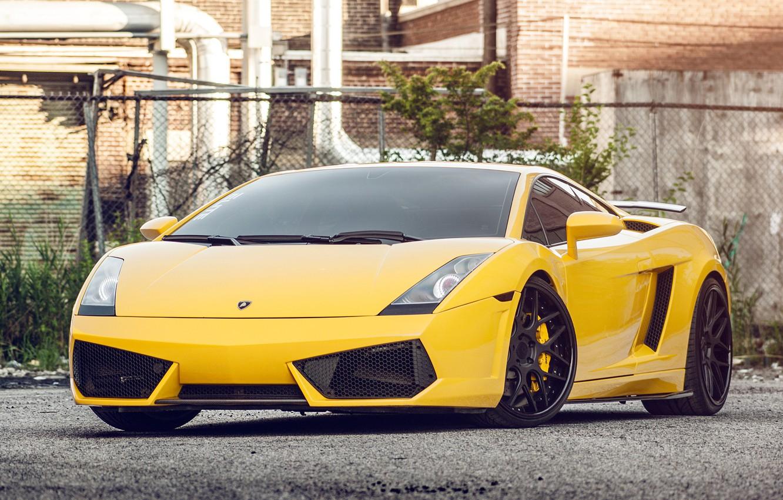 Photo wallpaper yellow, Lamborghini, Gallardo, Lamborghini, yellow, front, Gallardo