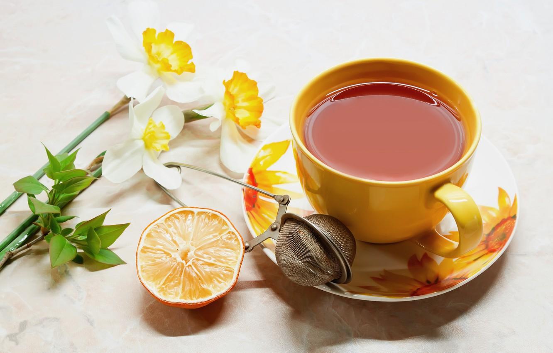 Photo wallpaper flowers, table, tea, orange, Cup, drink, mesh, saucer
