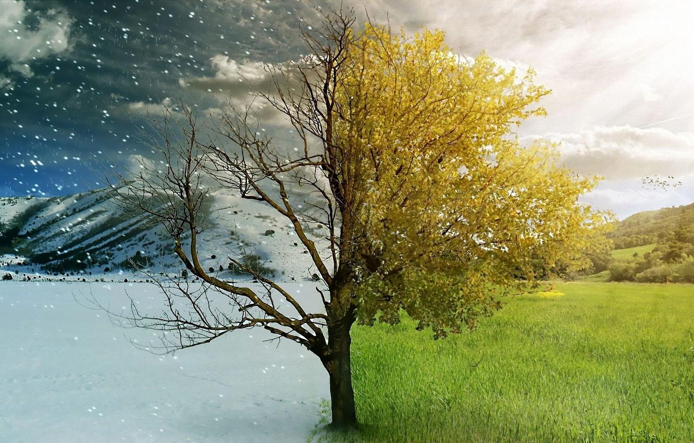Photo wallpaper winter, autumn, nature, seasons, beauty