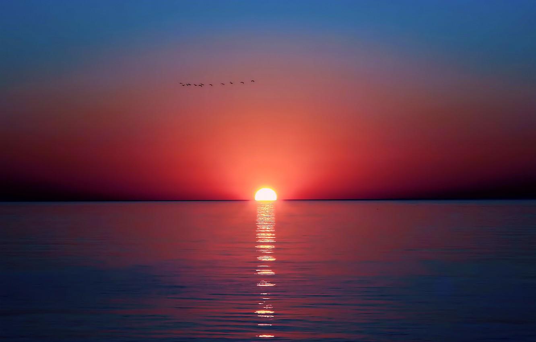 Photo wallpaper sea, the sky, the sun, sunset, birds, reflection
