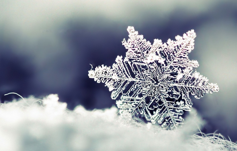 Photo wallpaper winter, snow, Snowflake