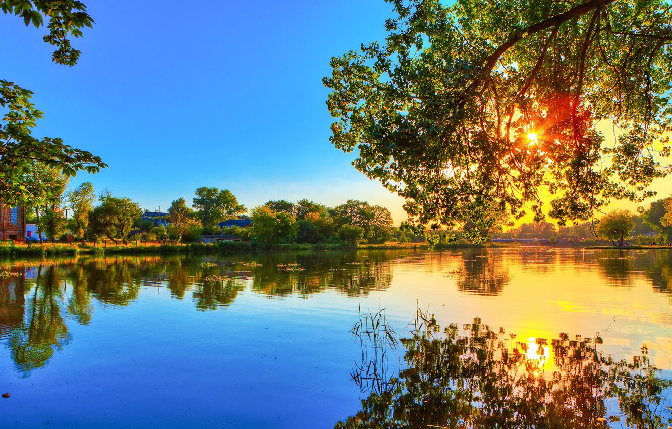 Photo wallpaper FOREST, NATURE, WATER, The SKY, The SUN, REFLECTION, SURFACE, LIGHT, SHORE, SPRING, TREES, RIVER, BRANCHES, …