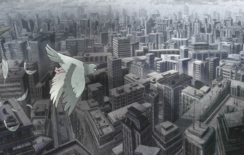 Photo wallpaper the city, dove, shop suicide