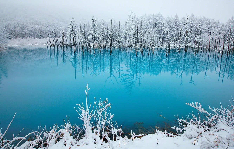 Photo wallpaper winter, lake, beauty, tale, Japan, photo, blue, snow, pond, Hokkaido, Kent Shiraishi, Biei