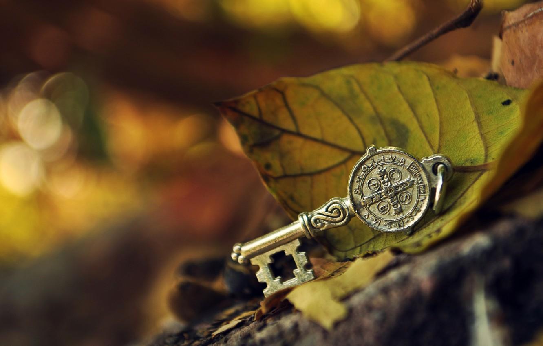 Photo wallpaper leaves, macro, metal, stone, key, green