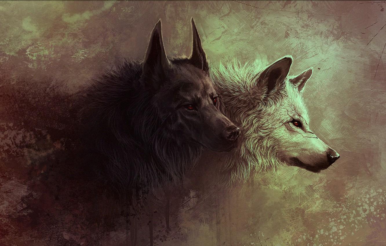 Photo wallpaper animals, wolf, art, wolf