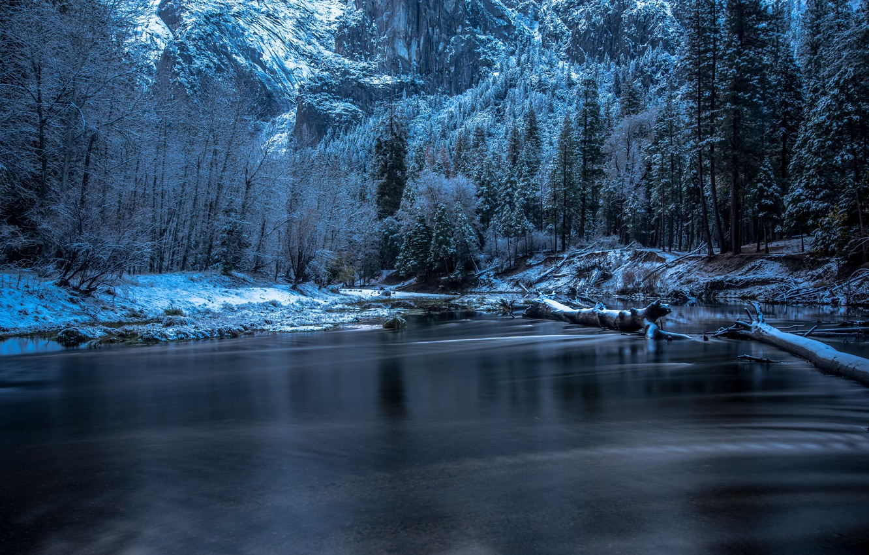 Photo wallpaper winter, snow, trees, river, rocks, CA, USA, Yosemite, driftwood, Yosemite National Park