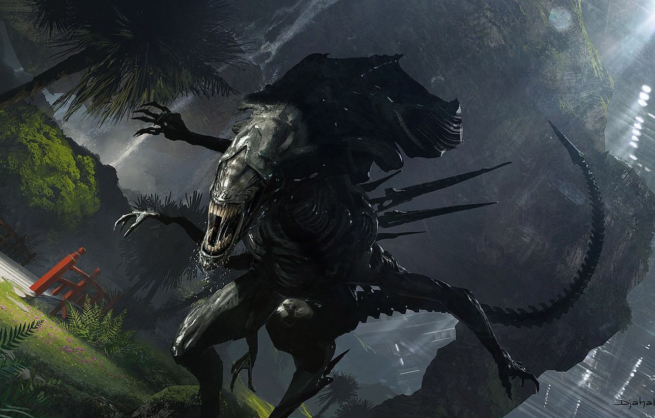 Wallpaper Others Stranger Alien Aliens Queen Xenomorph