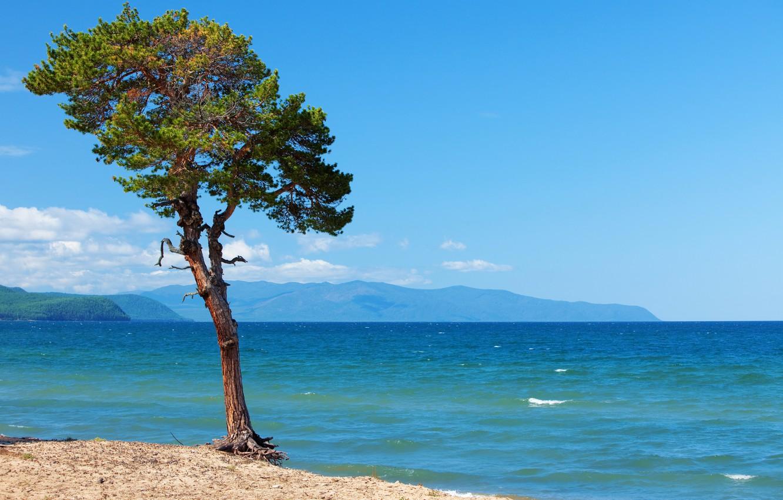 Photo wallpaper photo, Nature, Tree, Lake, Baikal, Russia, Landscape, Baikal
