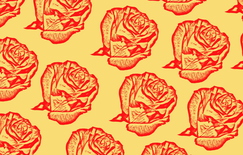 Photo wallpaper flowers, rose, roses, fabric, flowers, roses