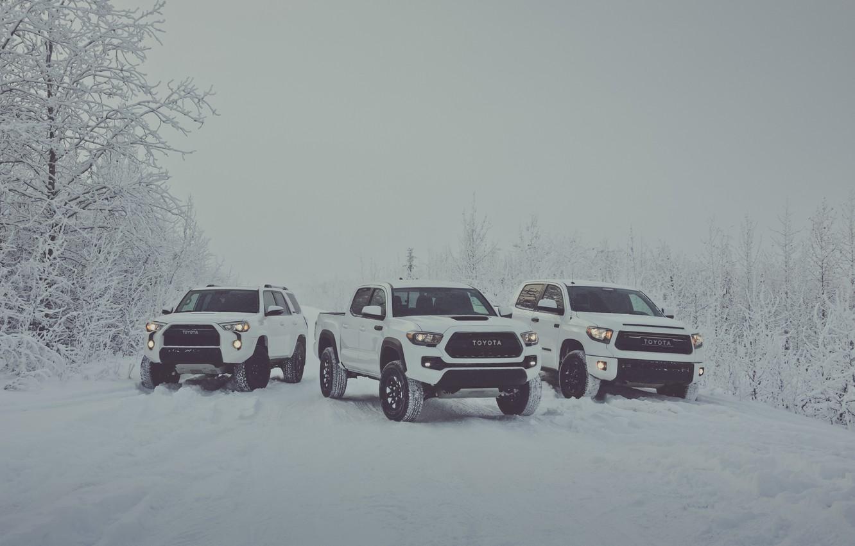 Photo wallpaper winter, snow, white, Toyota, pickup, snow, pickup, TRD, Tundra, Tacoma