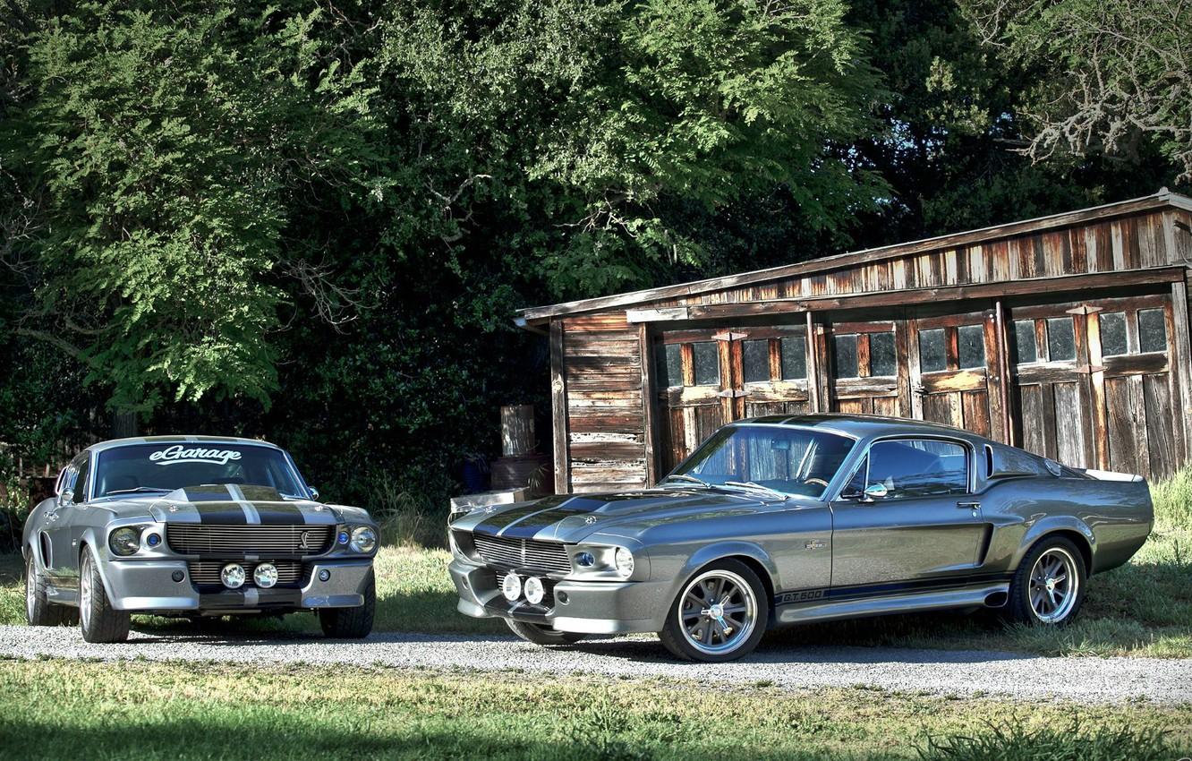 Photo wallpaper GT500, Ford Mustang, Shelby Eleanor, Ford Mustang