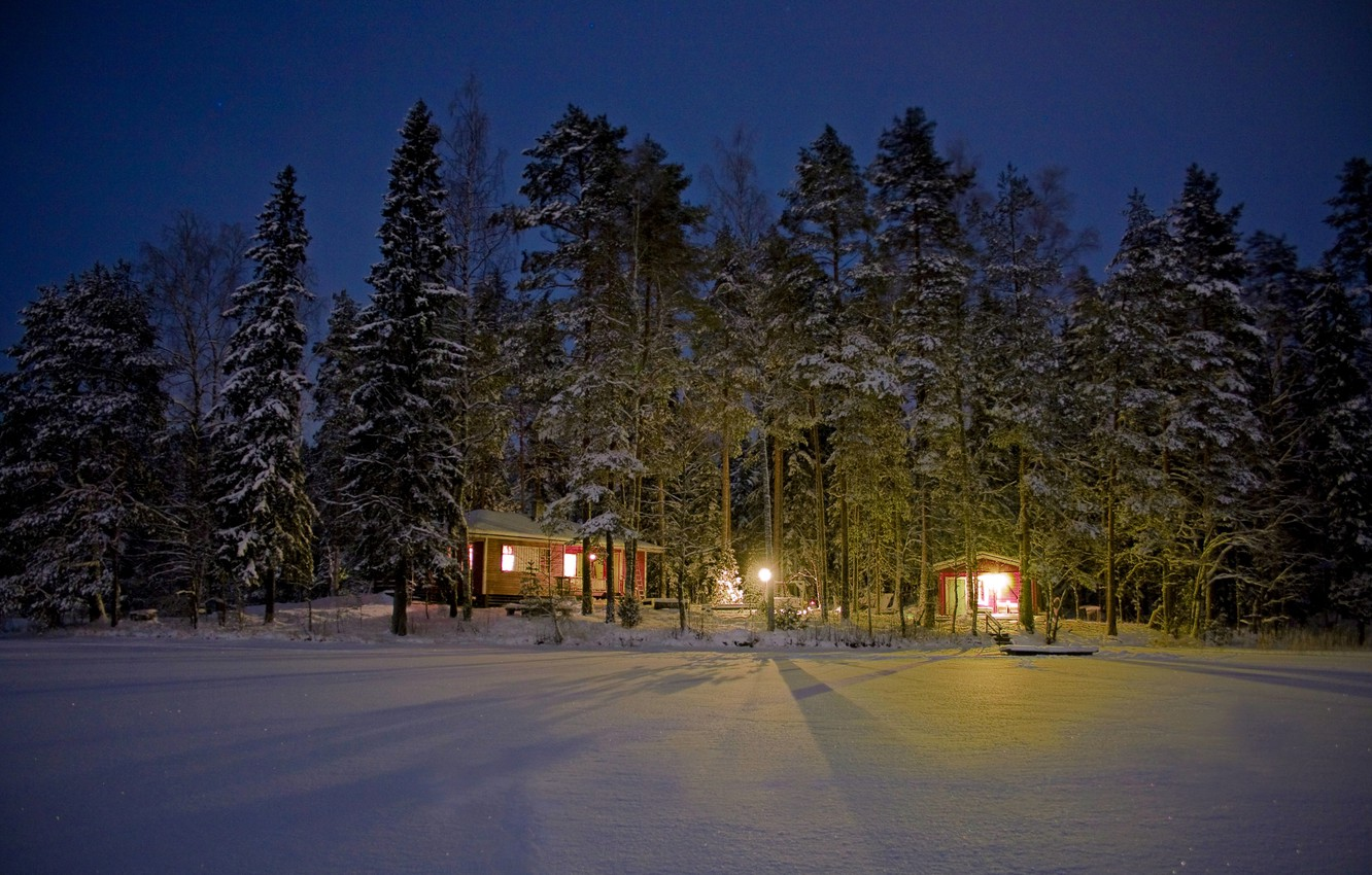 Photo wallpaper winter, forest, light, snow, trees, night, lights, houses, Finland