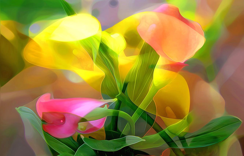 Photo wallpaper line, flowers, abstraction, paint, petals, stem