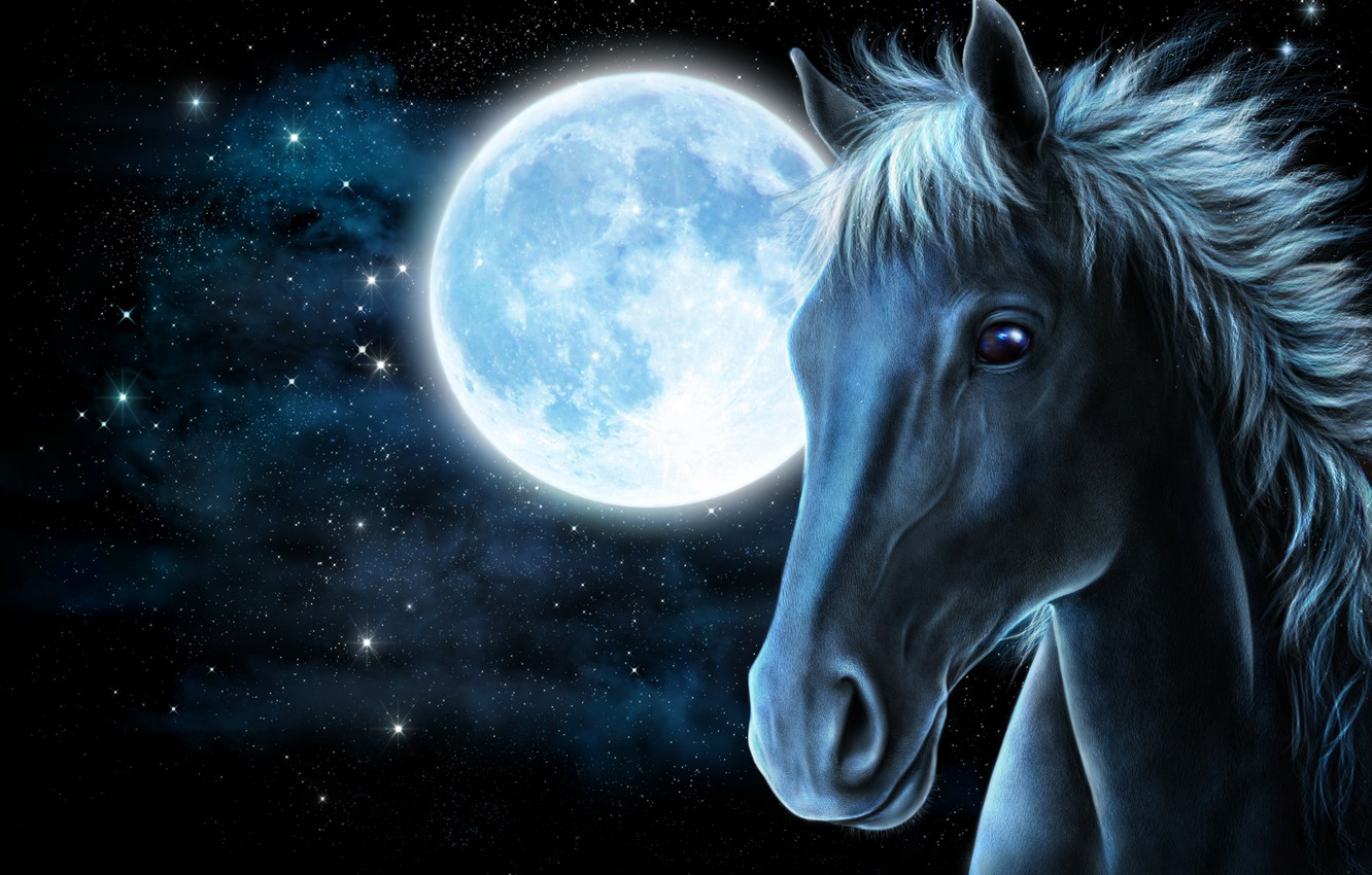 Photo wallpaper face, stars, rendering, horse, the moon, horse
