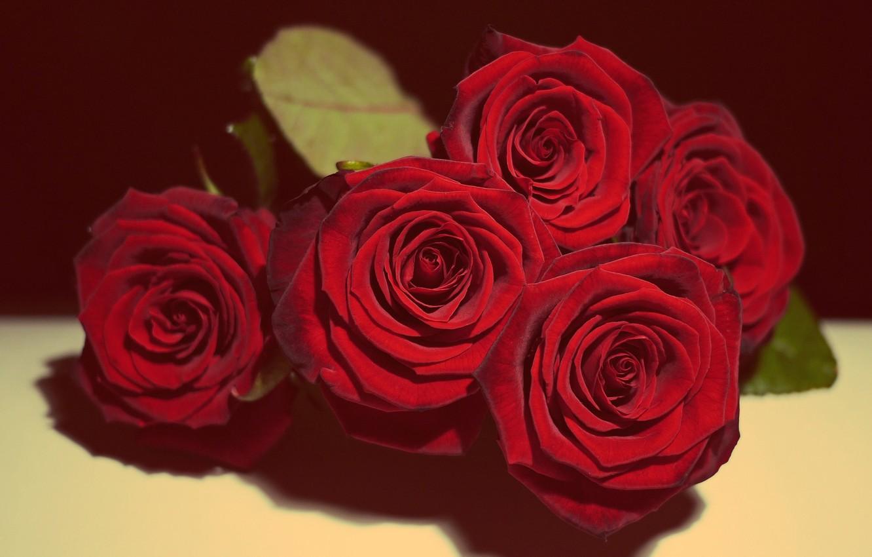 Wallpaper Love Beautiful Flowers Roses Vintage Valentine S