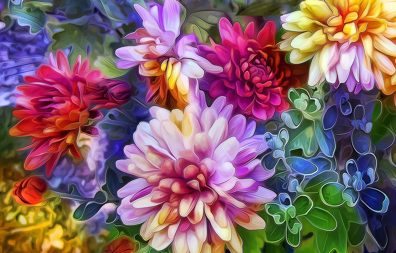 Photo wallpaper line, flowers, paint, petals, strokes, flowerbed