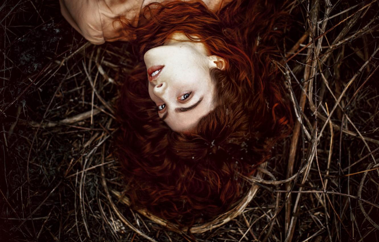 Photo wallpaper grass, look, girl, face, hair, brown hair