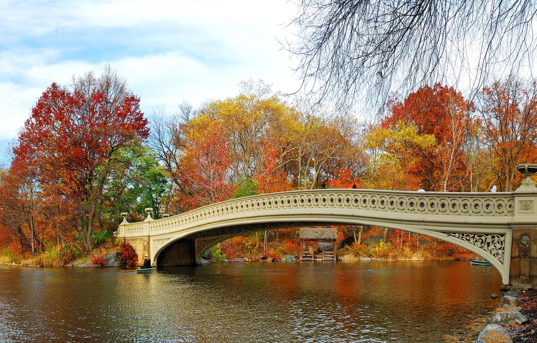 Photo wallpaper autumn, leaves, trees, bridge, Park, river, landscape, nature, bridge, park, autumn, leaves, tree