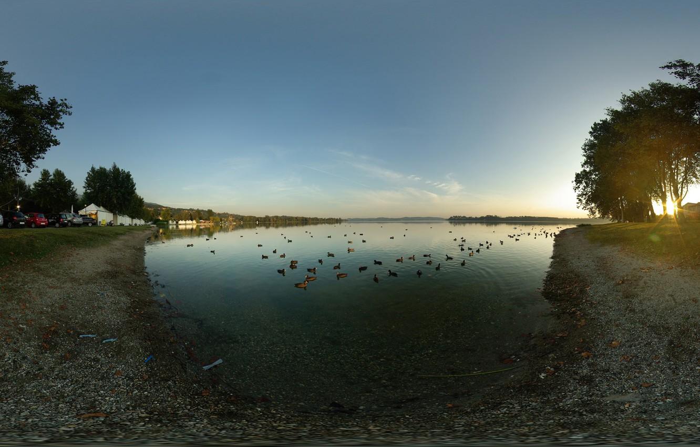 Photo wallpaper trees, machine, lake, duck