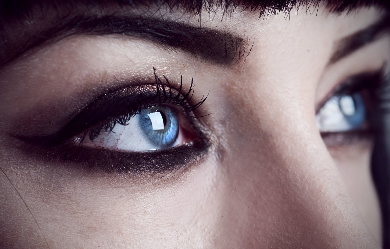 Photo wallpaper girl, close-up, woman, blue eyes, face, eye, female, make up, Shelley Moore, brows