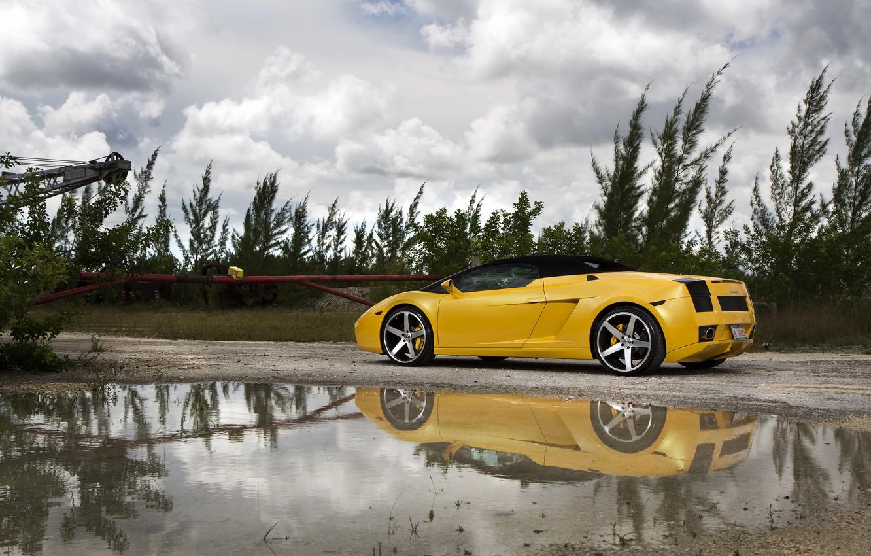 Photo wallpaper grass, trees, yellow, puddle, gallardo, convertible, lamborghini, drives, rear view, yellow, Lamborghini, Gallardo, lp560-4 spyder