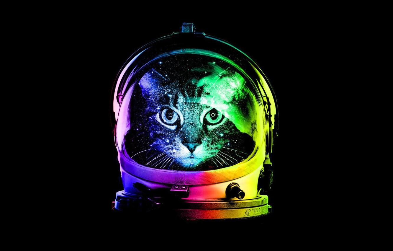 Photo wallpaper Minimalism, Cat, Helmet, Cat, Minimalism, Hat, Astrocat, Astrokot