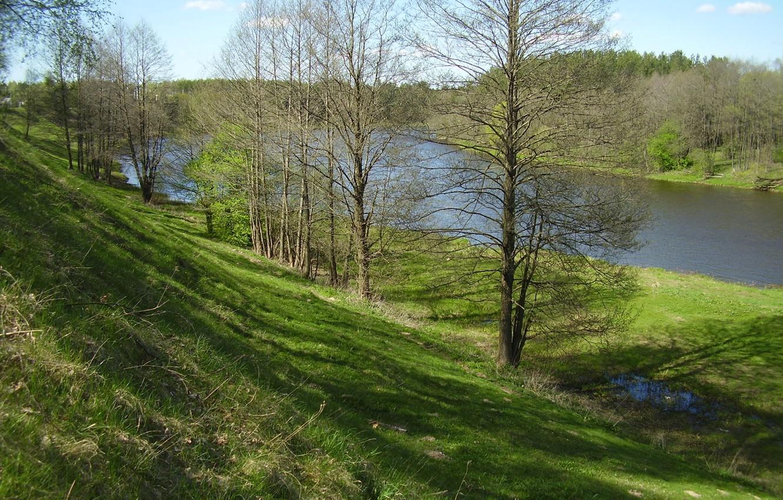 Photo wallpaper trees, river, spring, Belarus, Vilia