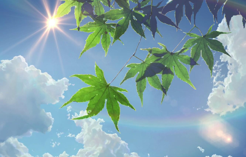 Photo wallpaper The sun, The sky, Clouds, Anime, Foliage, Makoto Xingkai, Anime, The Garden Of Words, Makoto …