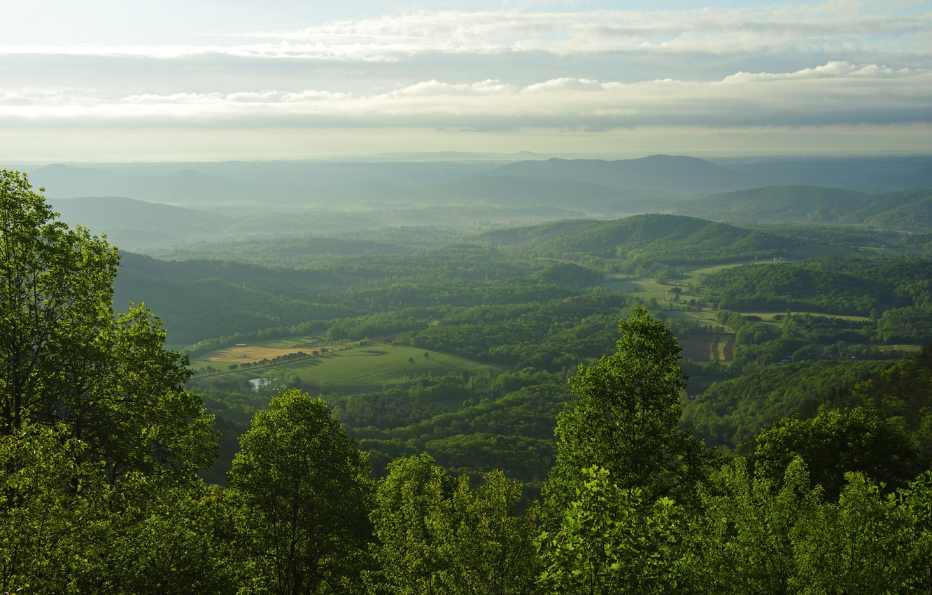 Photo wallpaper mountains, field, panorama, USA, forest, Blue Ridge Parkway