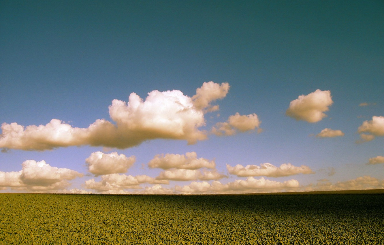 Photo wallpaper field, clouds, color