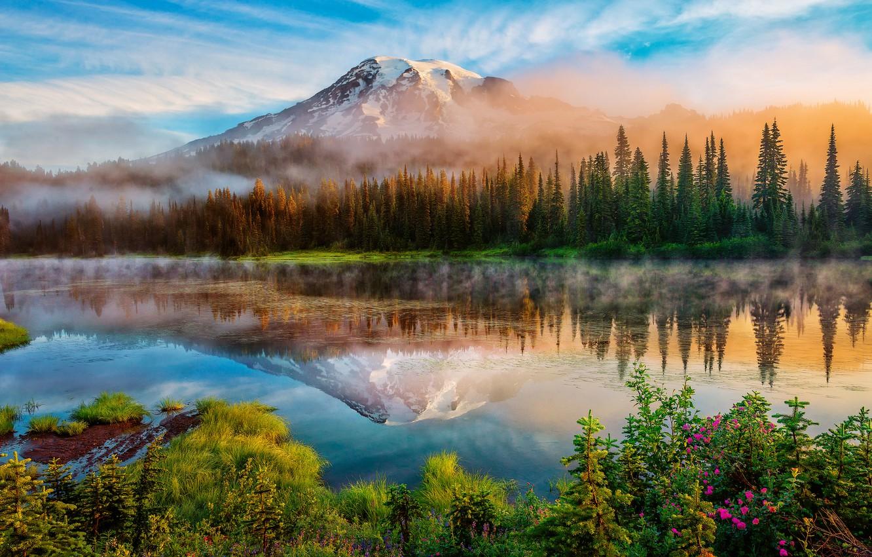 Photo wallpaper forest, summer, reflection, fog, lake, mountain, morning, USA, Washington, Mount Rainier, Rainier, The cascade mountains, …
