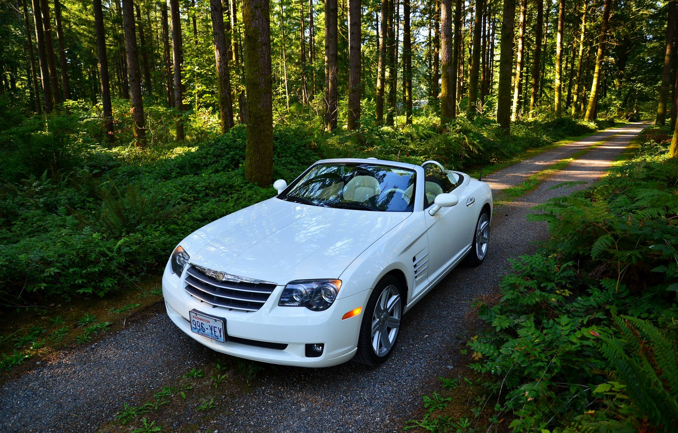 Photo wallpaper road, forest, white, convertible, trees., chtysler, Crossfire SRT6