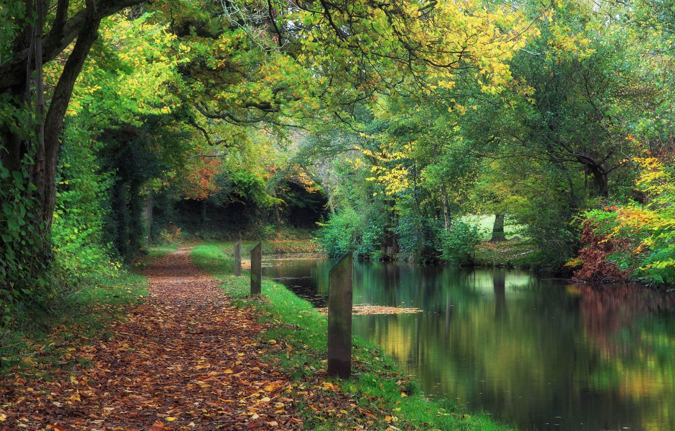 Photo wallpaper autumn, Park, channel, UK, falling leaves, Wales, Wales, Llanover