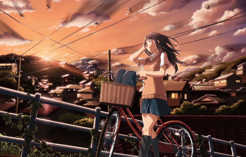 Photo wallpaper the sky, girl, clouds, sunset, birds, bike, the city, home, anime, art, schoolgirl, inoki