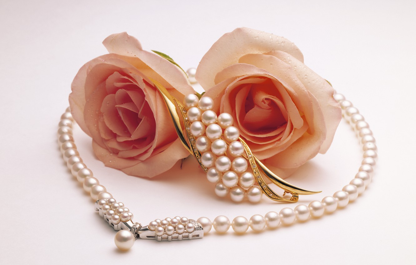 Photo wallpaper roses, Two, pearl, brooch